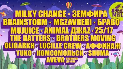 Фестиваль ДИКАЯ МЯТА. 9, 10, 11 июня 2018. Тульская область, с. Бунырёво
